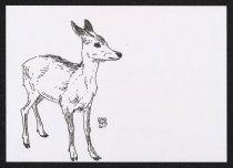 Image of [Deer] - Gfrorer, Julia, 1982-