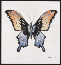 Image of Butterfly - Sally, Zak