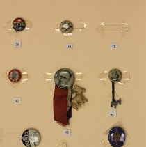 Image of Anti FDR Pin - #40