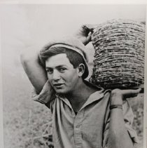 Image of D494.15 - Building the Kibbutz, 1937