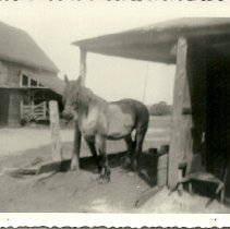 Image of 2005.015.25 - Dyke Family Collection