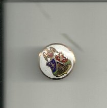 Image of Improved Order of Red Men pin