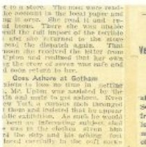 Image of Mary Lizzie clipping copy, 3