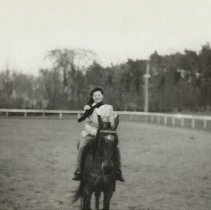 Image of Unknown woman riding Yangtze at T-Ledge Stables