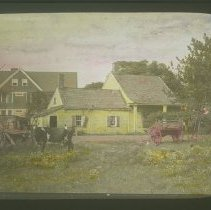 Image of [Dutch farmhouse and cow] - Ditmas lantern slide collection