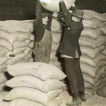 Image of More Coffee Drinking When National Prohibition Comes - Brooklyn photograph and illustration collection