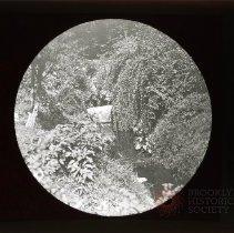 """Image of Scene in Park """"wild"""" - Adrian Vanderveer Martense collection"""