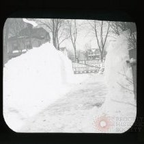 Image of Looking Out My Gate - Adrian Vanderveer Martense collection