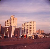 Image of [New York Aquarium], Coney Island - Otto Dreschmeyer Brooklyn slides