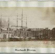 Image of [Harbeck Stores.] - George J. Bischof papers and photographs