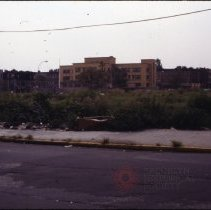 Image of [Yard] - 1977 Blackout Slide collection