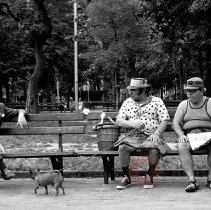 Image of [Men on a park bench] - Lucille Fornasieri Gold photographs