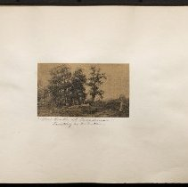 "Image of ""Old Oaks at Creedmoor"" - Eugene L. Armbruster photographs and scrapbooks"