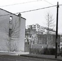 Image of [North side of Tillary Street] - Edna Huntington papers and photographs