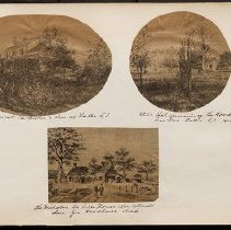Image of [Collage of Trees and Homes]  - Eugene L. Armbruster photographs and scrapbooks
