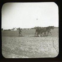 Image of [Man plowing field] - Adrian Vanderveer Martense collection