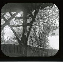 Image of [Architectural detail of Rustic Shelter, Prospect Park] - Adrian Vanderveer Martense collection