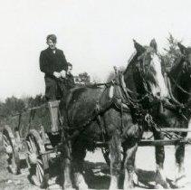 Image of Horse Pulling Wagon_5