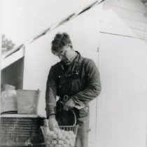 Image of Collecting Eggs
