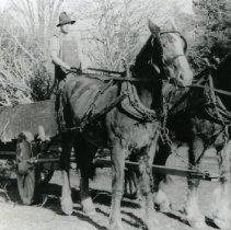 Image of Horse Pulling Wagon_2