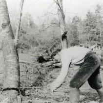Image of Chopping Wood