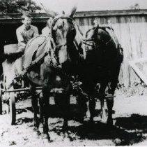 Image of Horse Pulling Wagon_3