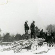 Image of Horse Pulling Wagon_6