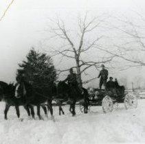 Image of Horse Pulling Wagon _7