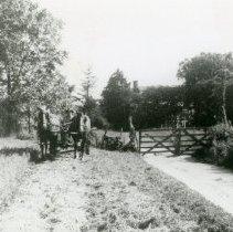 Image of Horse Pulling Wagon_4