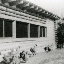 Image of Chicken Coop_3