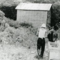 Image of Working The Fields_3