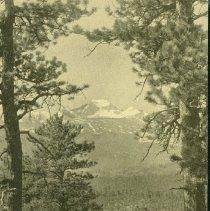 Image of 1984.012.017 - postcard