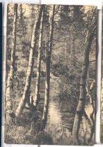 Image of 1985.041.328 - Postcard
