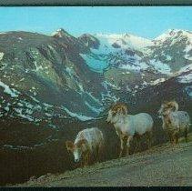 Image of 2000.013.001 - Postcard
