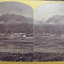 Image of 2007.039.061 - Stereograph