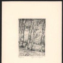 Image of 2000.001.004 - print