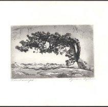 Image of 2000.001.135 - print