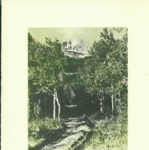 Image of 2012.003.437 - Print