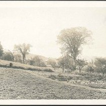 Image of [View of the Shaker Garden] - Mount Lebanon, NY
