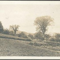 Image of [View of the Garden, North Family] - Mount Lebanon, NY