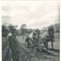 Image of [Brother Curtis White in the Field] - Mount Lebanon, NY