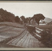 Image of The Kitchen Garden - Mount Lebanon, NY