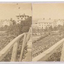 Image of [View of Shaker Gardens] - Mount Lebanon, NY