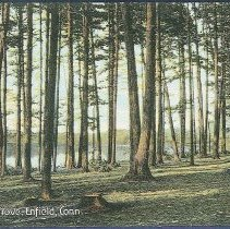 Image of Cresent Grove, Enfield, Conn. - Enfield, CT
