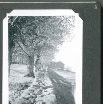 """Image of """"Stone Wall from Cemetary to Horse Barn"""" - Canterbury, NH"""