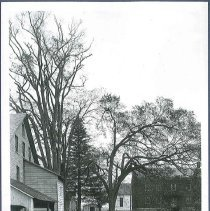Image of [View in Croosroad to the West] - Watervliet, NY