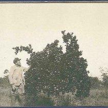 Image of [Benjamin De Roo] - Mount Lebanon, NY