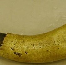 Image of Horn, Powder