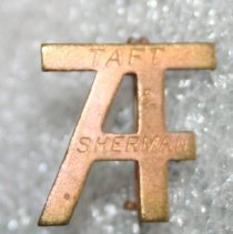 Image of Pin, Campaign