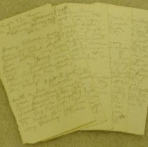 Image of Elise Diary Entries -